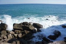 室戸岬の海岸の画像018