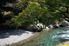 室戸岬の川の画像002