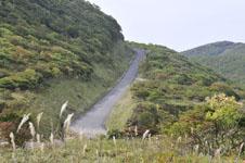 北海道の道路の画像001
