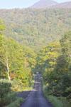 北海道の道路の画像002