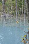 北海道の池の画像002