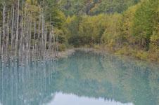 北海道の池の画像004