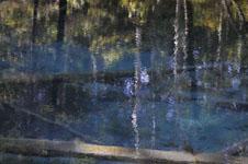 北海道の池の画像008
