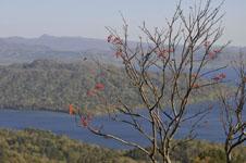 北海道の湖の画像007
