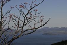 北海道の湖の画像008