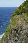 北海道の海の画像003