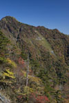 瓶ヶ森の紅葉の画像036