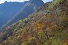 瓶ヶ森の紅葉の画像051