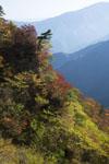 瓶ヶ森の紅葉の画像052