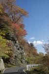 瓶ヶ森の紅葉の画像054