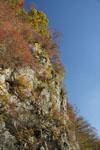 瓶ヶ森の紅葉の画像055
