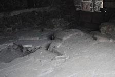 メキシコシティテンプロ・マヨール遺跡の画像007