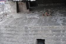 メキシコシティテンプロ・マヨール遺跡の画像014