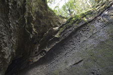 伊尾木洞の画像004