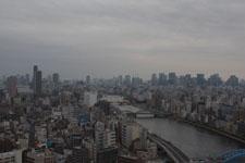 隅田川と浅草の街並みの画像016