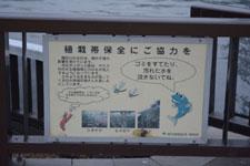 隅田川の看板