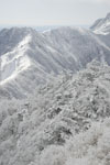 寒風山の冬山の画像009