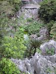 大石林山の岩の画像003