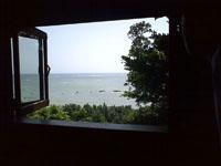 沖縄の海の画像003