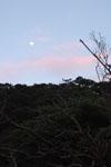 沖縄の山の上の月の画像001