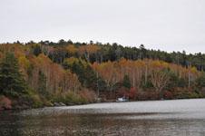 長野の紅葉の画像001