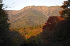長野の紅葉の画像004