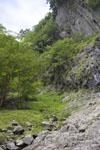 岩山の画像002