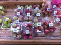 高知県の果物