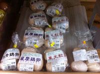 高知県の卵