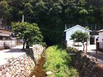 高知県の川の画像002
