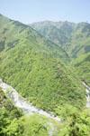 祖谷の渓谷の画像003