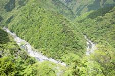 祖谷の渓谷の画像004