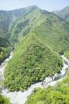 祖谷の渓谷の画像007