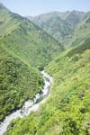 祖谷の渓谷の画像008