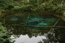 北海道の池の画像011