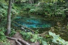北海道の池の画像012