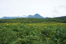 山の画像004