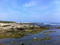 海の画像029