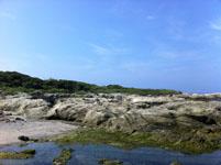 海の画像030