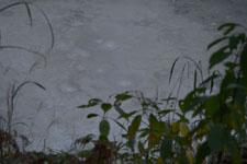 阿寒湖のボッケの画像003