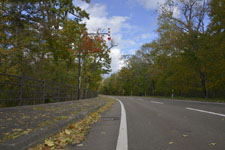 屈斜路湖畔の紅葉の画像003