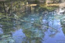 清里町の神の子池の画像002