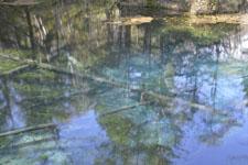 清里町の神の子池の画像003