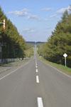 ミルクロード(19号道路)の画像001