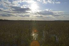 風蓮湖の湿原の画像002