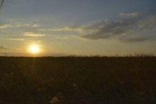 根室半島の夕日