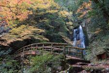 高知の長沢の滝の画像002