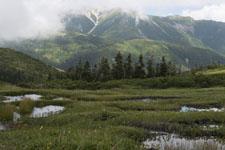赤木沢の山の画像002