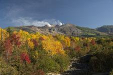 北海道の紅葉の画像016
