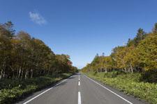 北海道の道路の画像006